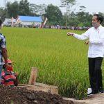 Survei Indikator: 63.7 Persen Masyarakat Puas dengan Kinerja Presiden Jokowi