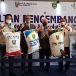 Modernisasi Pertanian Sumsel, Herman Deru Resmikan Marketplace Sibejajo